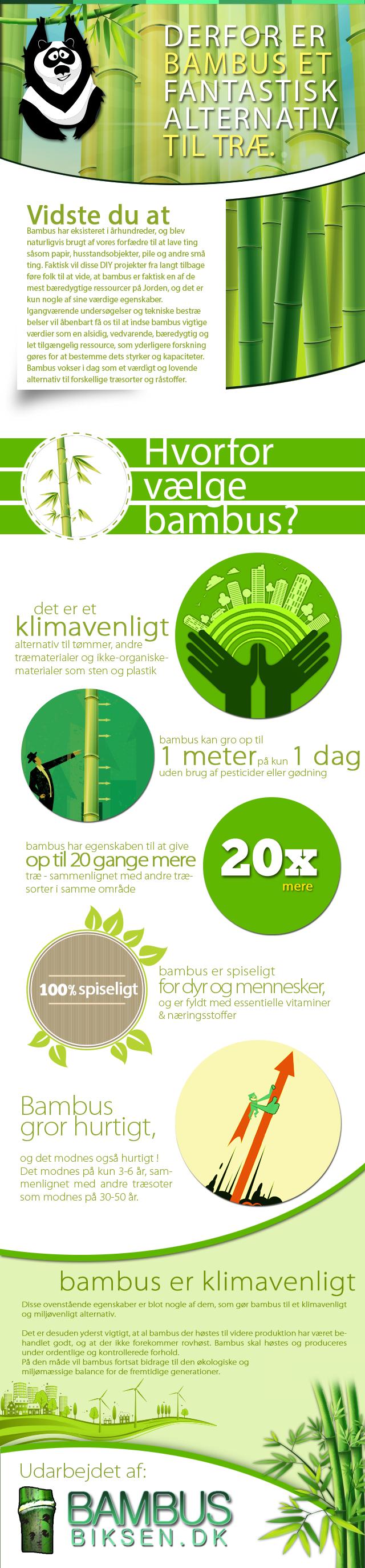 Infografik om Bambus